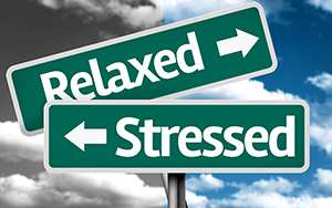 2 street type signs relaxed stressed