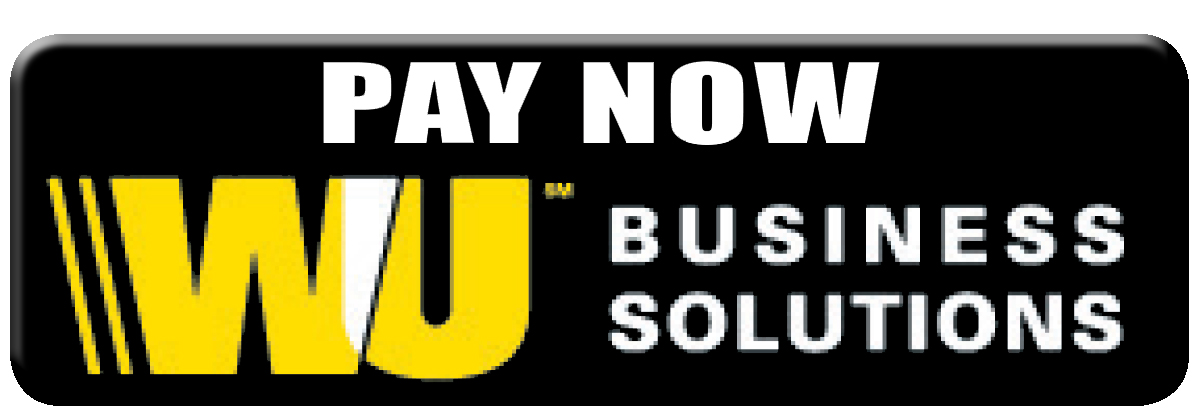 Pay Now Western Union Business Solutions